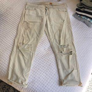 Anthropologie Boyfriend cut Jeans. Light wash!